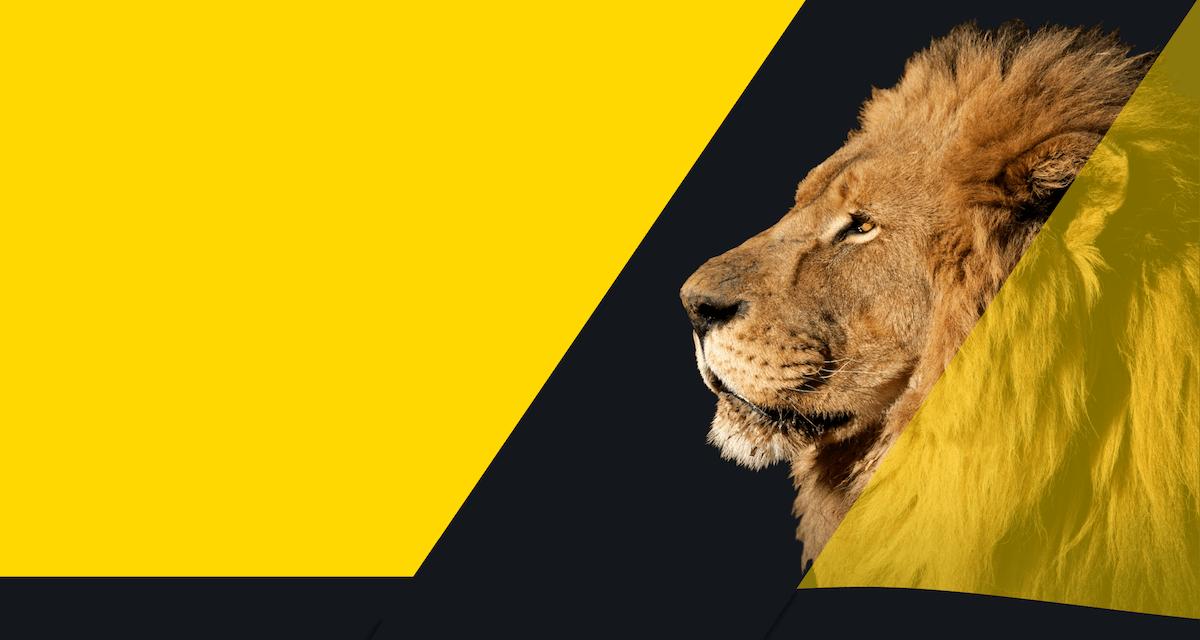 Lion Life Insurance